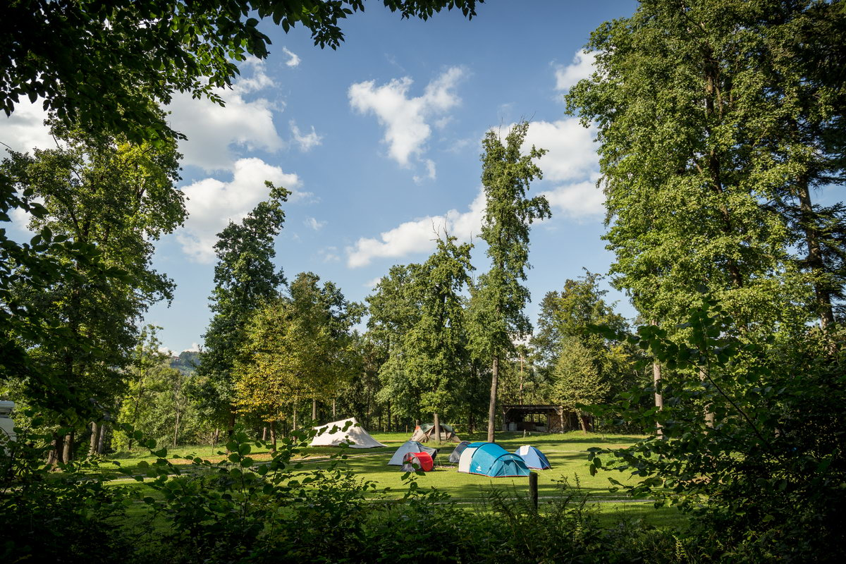 forest-camping-mozirje-1