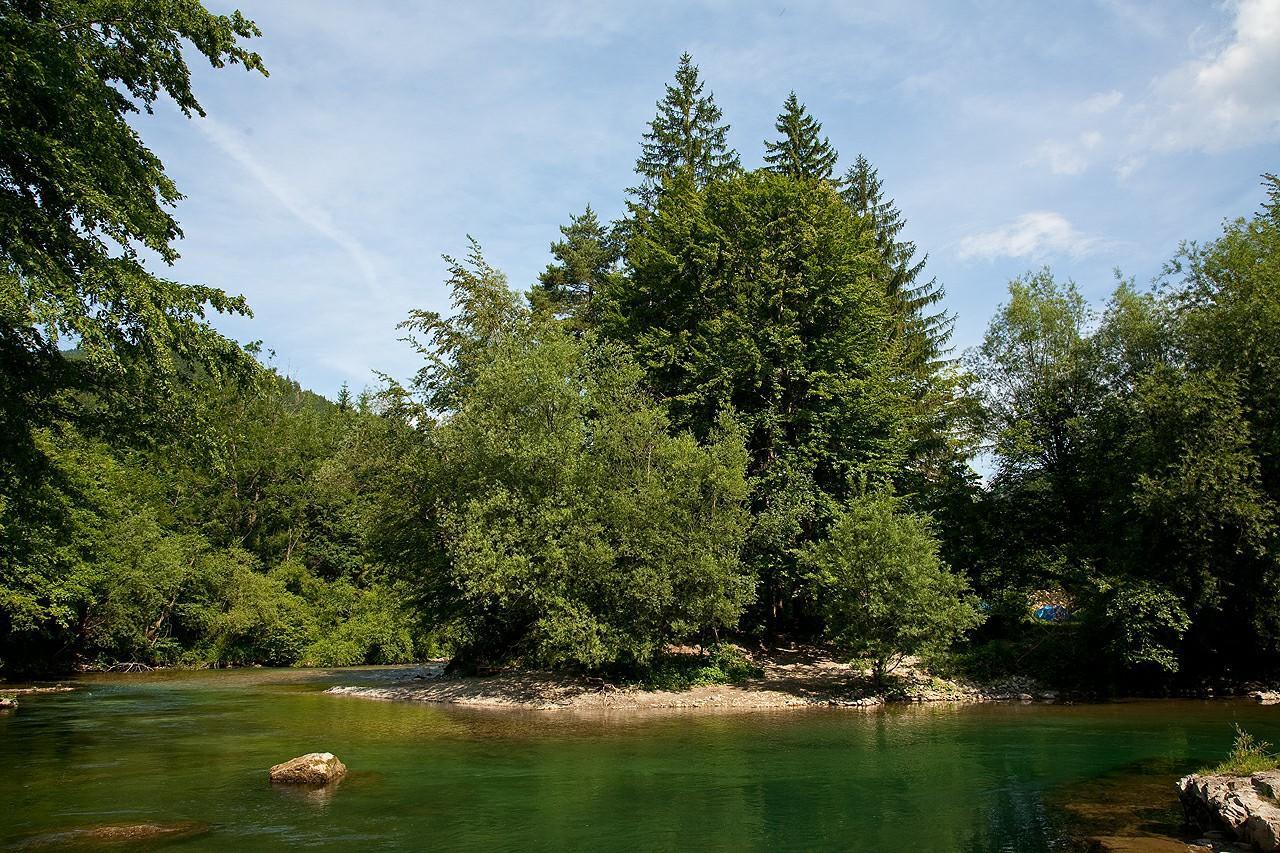 NaturPlac (3)